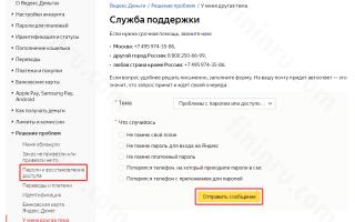 Вход в кошелёк Яндекс.Деньги в личный кабинет: проблемы авторизации и их преодоление