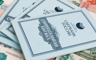 Назначение и суть сберкнижки Сбербанка и список документов для её открытия