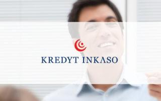 ООО Кредит Инкассо Рус: преимущества и специфика деятельности холдинга
