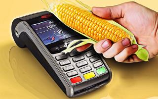 Как пополнить карту Кукуруза: все возможные способы — моментально и без комиссии