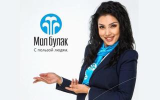 МФК банк Мол Булак: кредитные предложения и порядок оформления займа