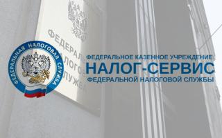 Как работает ФКУ Налог Сервис ФНС России и что это за организация?